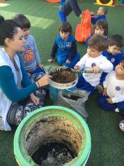 educaca-ambiental-escola-saber-viver-bc